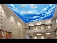 130-www.dar-eg.com-tempered-glass-ceiling-skylight-Roof-اسقف-زجاجية-متحركة-تركيب-اسقف-زجاجية-اسقف-زجاجية-الرياض-اسقف-زجاجية-ملونة-سقف-corridor-glass-floors-ceilings-house